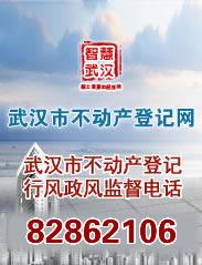 武汉市不动产登记网